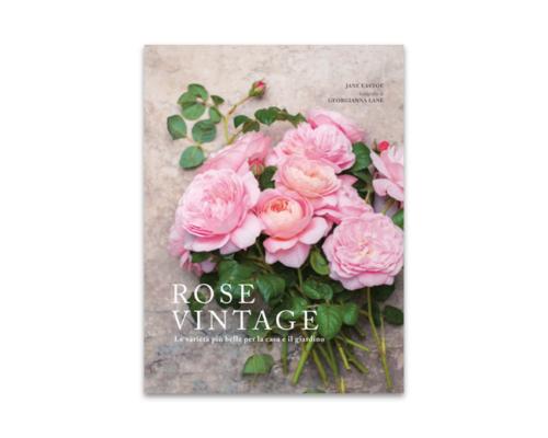 Rose vintage. Le varietà più belle per la casa e il giardino